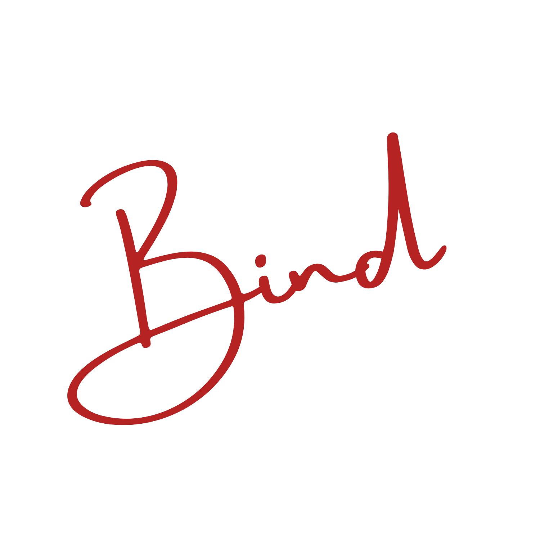 Bind - Especialistas en SEO y Desarrollo Web